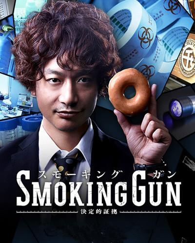 Smoking Gun 决定性证据 (2014)