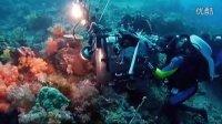 《海底世界》预告花絮之Indonesia