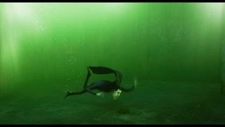 德古拉被拉入水中 索性就将水放干