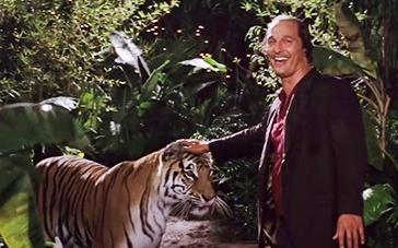 《金矿》台湾中字预告 马修·麦康纳徒手摸老虎