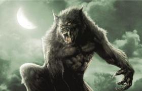 【范海辛】看点 狼人大战吸血鬼