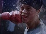 电影《拳霸风云》终极预告 拳拳到肉招招见血