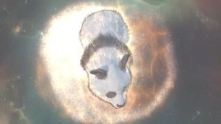 虎牙熊猫的诞生 聂离的第二只魔宠