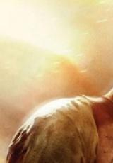 劫持电影片段——《虎胆龙威4》