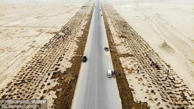 新疆尉犁:沙漠邊陲千名黨員干部植樹造林迎春分