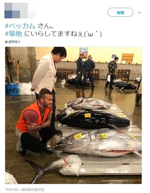 组图:早起的鸟儿有星追!小贝现身筑地市场 日本鱼贩惊了