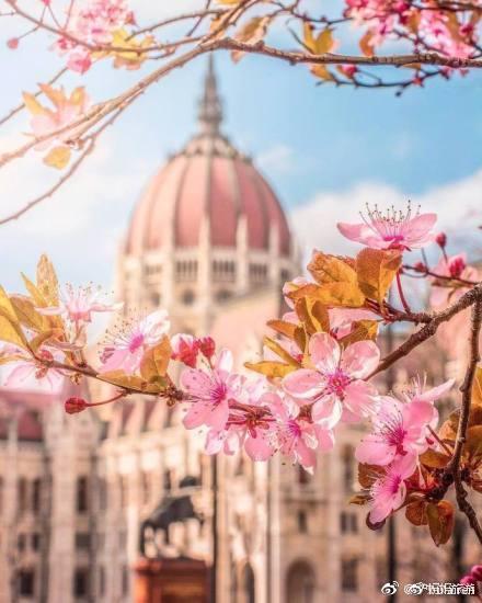 布達佩斯之春