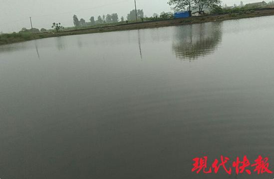 """除苔?#20142;?#27700;草""""通杀"""" 南京水产养殖户叫苦"""