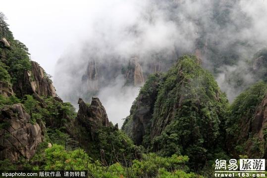 盛夏美景:雨后的黄山云海飘渺如仙境