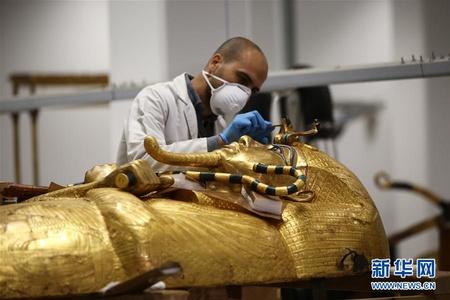 """""""我在埃及修文物"""""""
