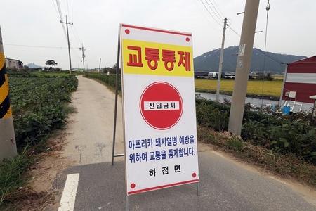 非洲猪瘟疫情增至5例 韩政府发布48小时禁行令