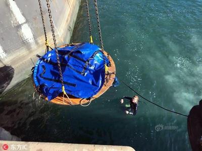 巨大翻车鱼被困干船坞 救援人员出动起重机营救