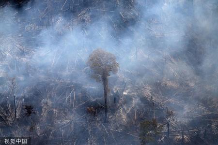 巴西亚马孙雨林大火持续 现场浓烟滚滚