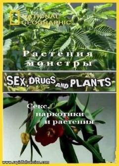 植物的奥妙世界