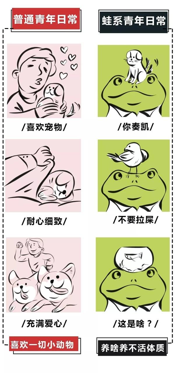 蛙系青年鉴别指南,看看你朋友圈里有谁中招? 生活常识 第8张