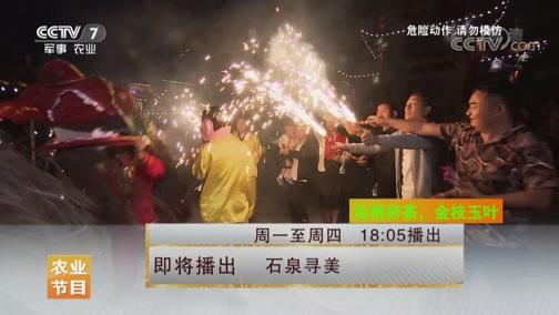 [美丽中国乡村行]石泉寻美 20190718