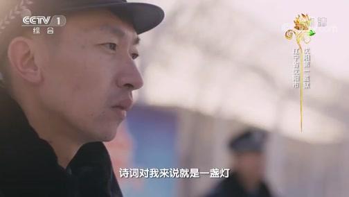 《中国诗词大会》第五季 第六场 20200204