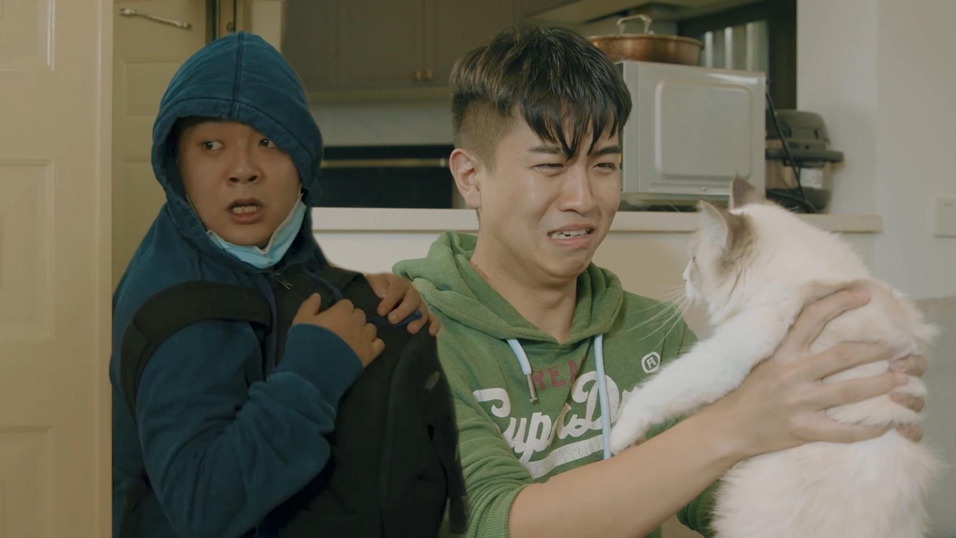《陈翔六点半》第288集 连猫都不让玩,这日子该咋过啊?