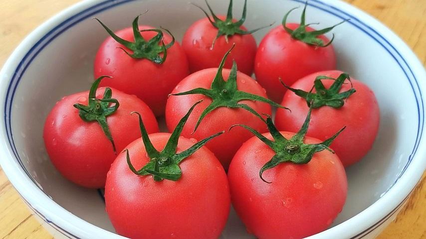 西红柿别炒着吃,教你新吃法,一次做6个,比吃肉还过瘾,太香了!