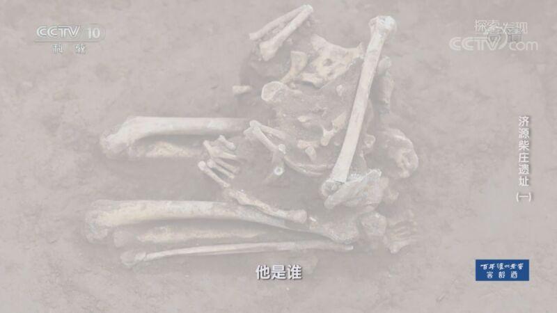 《探索·发现》 20200921 济源柴庄遗址(一)