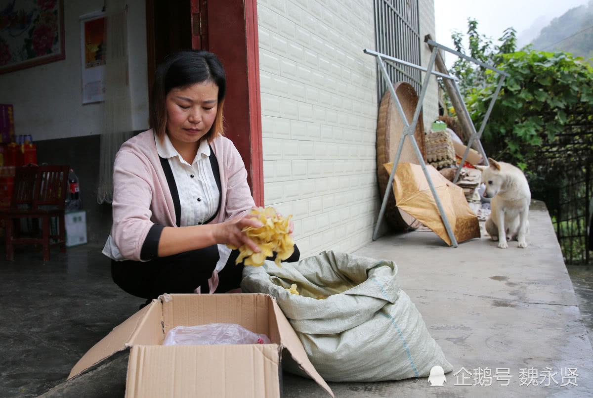 冒险岛私服开服表49岁山村农妇网上卖家乡土特产,买过的好多都成了回头客