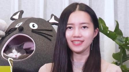 八二年的拉菲:猫藓也会传染给人类,猫咪得了猫藓该怎么治?