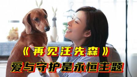 爱与守护是永恒主题,宠物题材奇幻电影《再见汪先森》定档