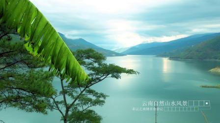 去云南旅游的