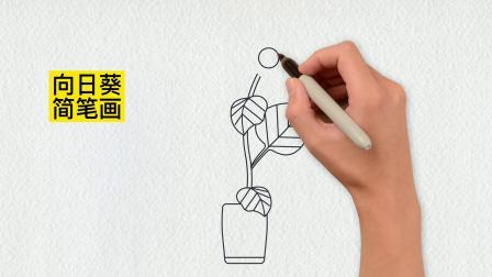向日葵简笔画,教你快速画出来