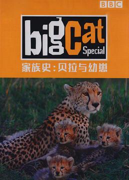 大猫日记家族史贝拉与幼崽剧照
