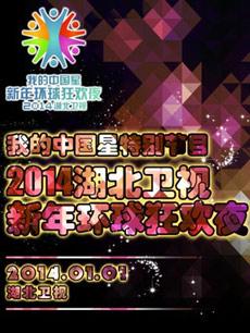 2014湖北卫视跨年新年环球狂欢夜剧照