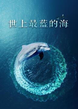 世上最蓝的海剧照