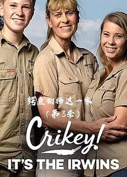 鳄鱼拍档这一家第三季剧照
