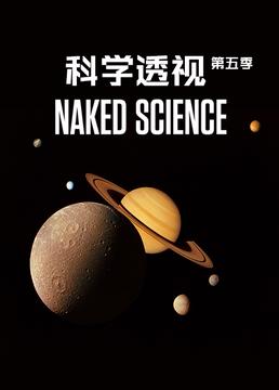 科学透视第五季剧照