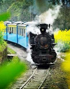 最后的蒸汽小火车剧照