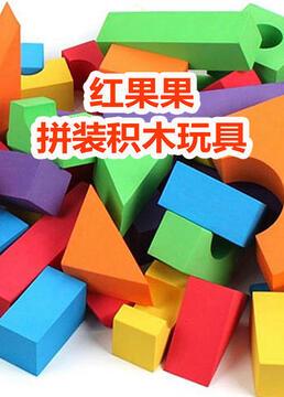 红果果拼装积木玩具剧照