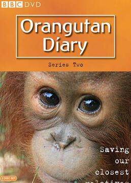 猩猩的日记第二季剧照