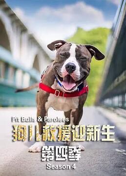 狗救援迎新生第四季剧照