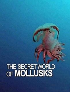 软体动物的秘密世界剧照