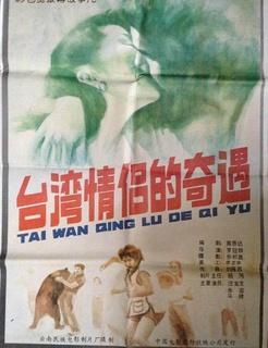 台湾情侣的奇遇剧照