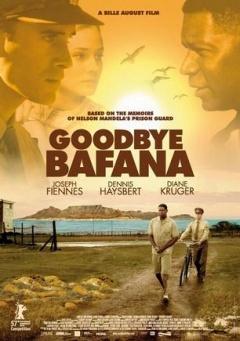 再见巴法纳剧照
