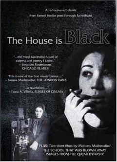 房屋是黑的剧照