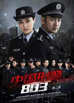 中国刑警803英雄本色剧照