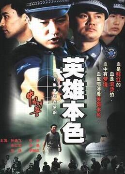 中国刑警之英雄本色剧照