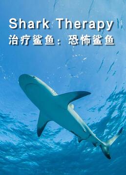 治疗鲨鱼恐怖鲨鱼剧照