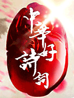 中华好诗词第五季剧照