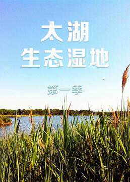 太湖生态湿地第一季剧照