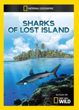 失落岛的鲨鱼