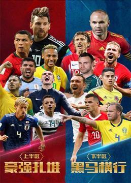 俄罗斯世界杯剧照