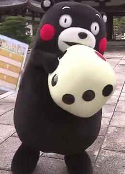 与熊本熊的熊本相遇之旅剧照